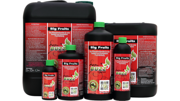 GBL Big Fruits - 100ml