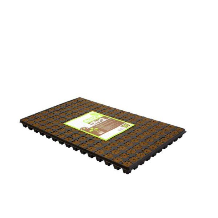 Eazy Plug 150 er Tablett Stecklingstray