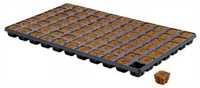 Eazy Plug 77 er Tablett Stecklingstray (10 St.) Ka